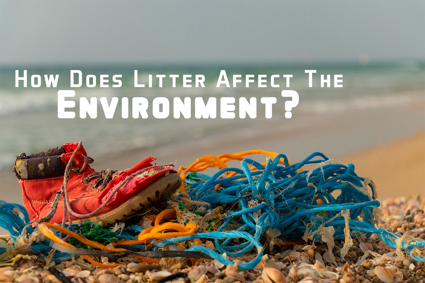 How Does Litter Affect The Environment_