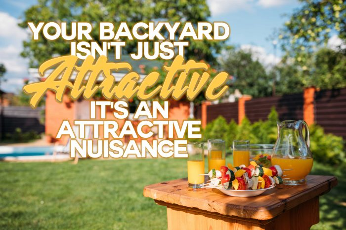 Your-Backyard-Isnt-Just-Attractive-Its-an-Attractive-Nuisan