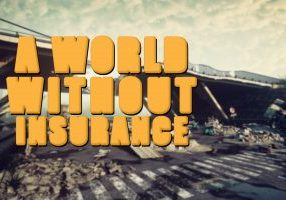 A World Without Insurance