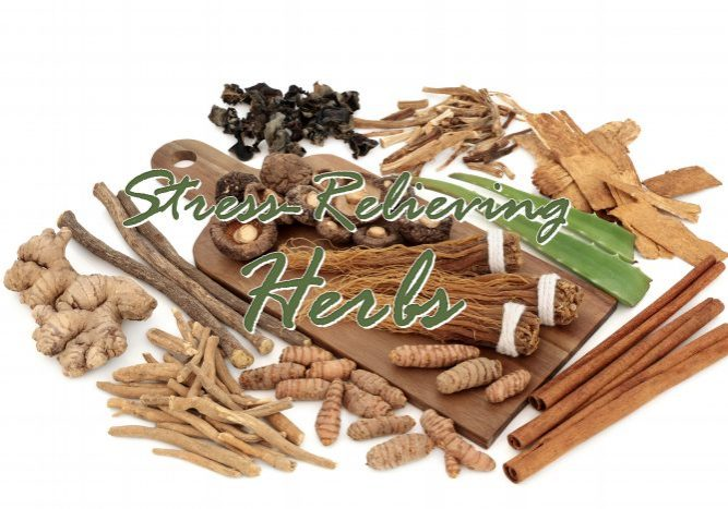 Stress-Relieving Herbs