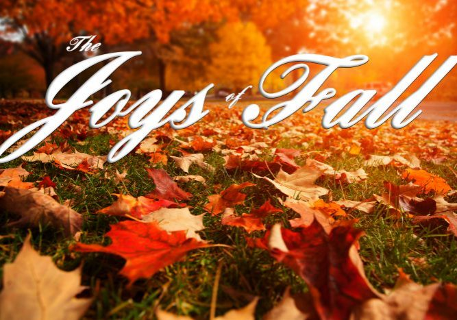 The Joys of Fall